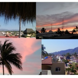 Some of the views